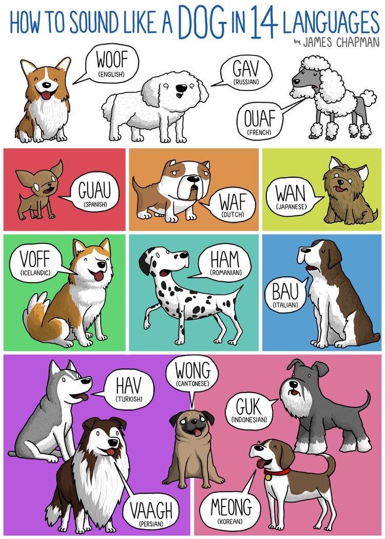 How dogs woof in other languages